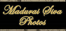 Madurai Photographers for Wedding | Photographers for Wedding Madurai | Photographers in Madurai